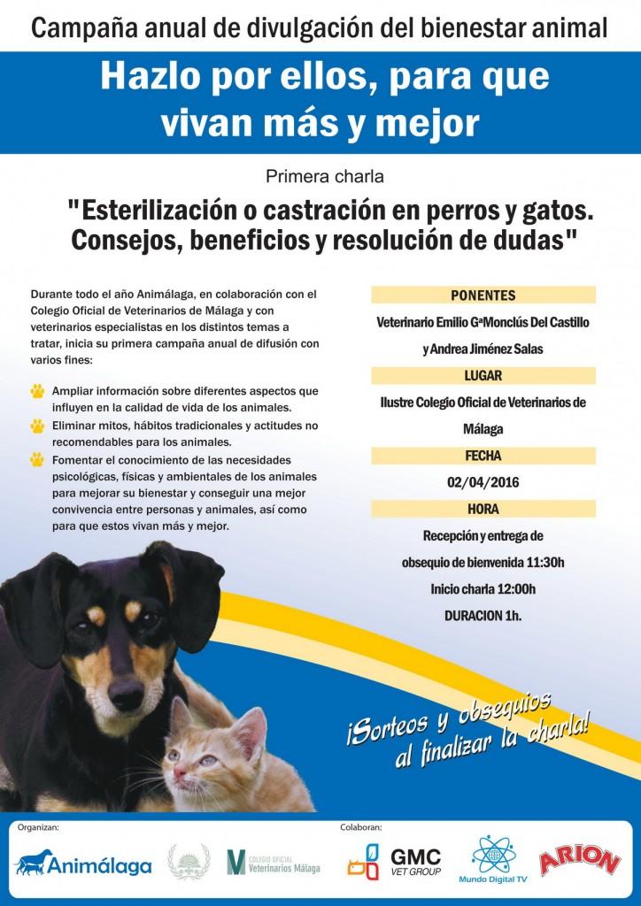 cartel charla esterilizacion MAS PEQUEÑO